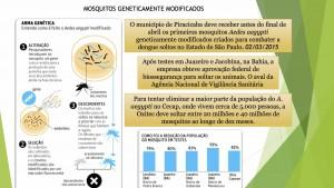1_Dengue Chikungunya e Zika