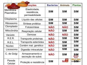 Slide08