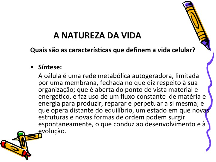 Slide06